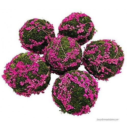 zorpia Natural Preserved Moss Hanging Ball Vase Bowl Filler for Garden Wedding Party Decoration 3.56 Pack Pink